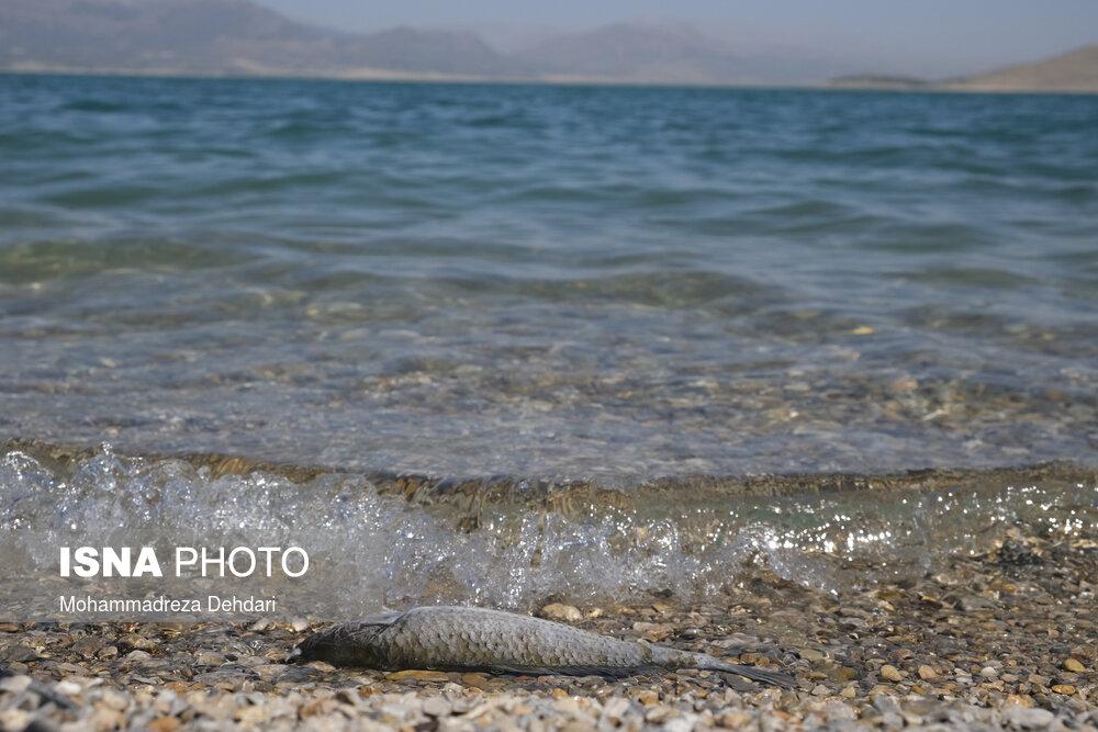 عکس/ وضعیت بحرانی سد «درودزن و ملاصدرا»