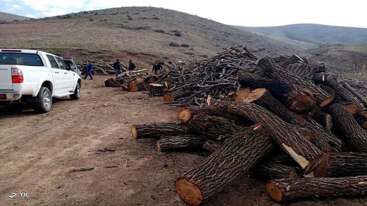 ۳۸ تُن چوب جنگلی قاچاق در مهاباد کشف و ضبط شد