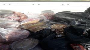 کشف و امحای گوشت غیر قابل مصرف در کرمانشاه
