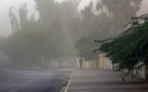 سرعت باد در بوشهر به ۵۴ کیلومتر بر ساعت میرسد