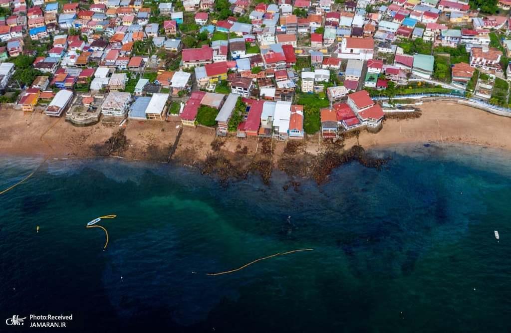 آلودگی سواحل جزیره تابوگا در پاناما توسط یک مایع روغنی
