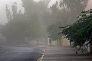 سرعت وزش باد در استان بوشهر افزایش مییابد