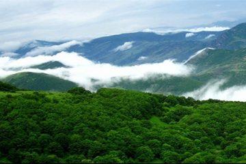 هشدار محیط زیست آذربایجانشرقی درباره خشک شدن جنگلهای ارسباران