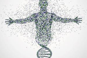 افزایش سرعت تکامل انسانها/ اثر شگرف جهش فرهنگی بر تکامل