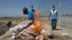 معدومسازی بیش از ۱.۵ تن موادغذایی فاسد در ممسنی