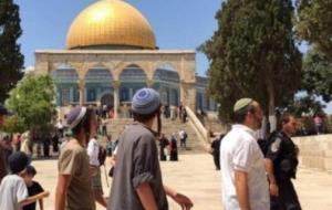 هتک حرمت مسجد الأقصی توسط شهرک نشینان یهودی