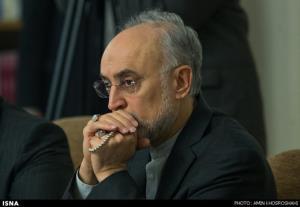 صالحی: باید با هر گرایش و عقیدهای در انتخابات شرکت کنیم