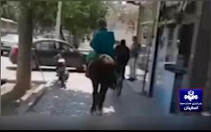 فیلم اسب سواری امام زمان قلابی در خیابانهای اصفهان