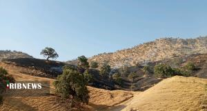 آتشسوزی در کوههای شلالدان باشت