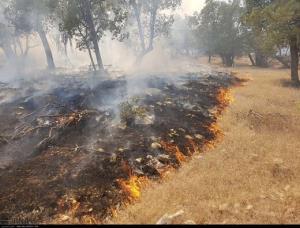 آتش در جنگلها و مراتع کهگیلویه و بویراحمد