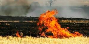 نقص فنی کمباین آتش به جان مزارع چرداول انداخت