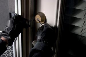 سارق ۲۰ منزل مسکونی در ملایر دستگیر شد