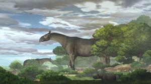 فسیل بزرگترین پستاندار خشکیزی تاریخ، کرگدن غولپیکر در چین کشف شد