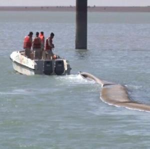 کشف محموله سنگین قاچاق در آب های جنوبی کشور