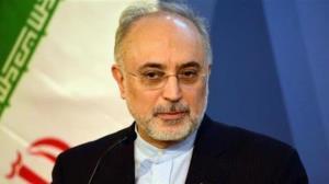 علیاکبر صالحی پیروزی رئیسی را تبریک گفت