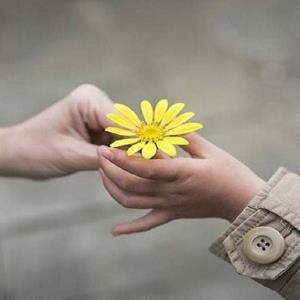 چگونه با قدردانی از دیگران به خوشبختی برسیم؟