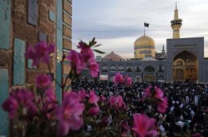 عیدی آخرین خبر به مخاطبان؛ این شما و این هم امام رضا(ع)