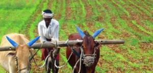 نقره داغ شدن کشاورز پس از شکستن نماد خدای روستا!