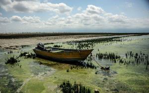 تراژدی دردناکِ خلیج گرگان