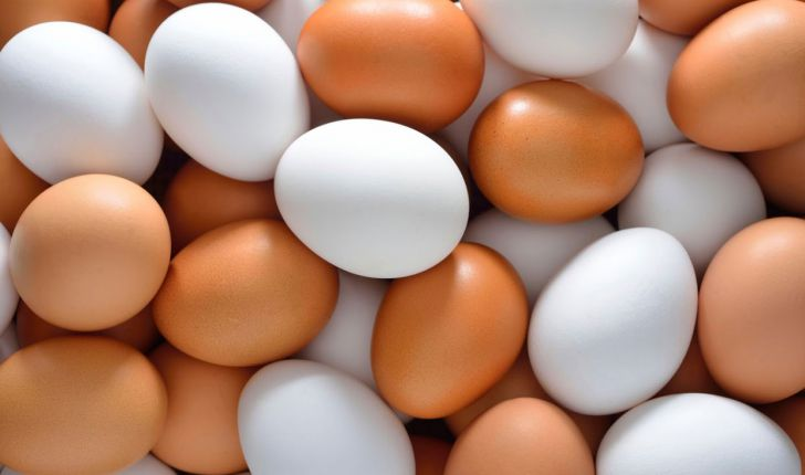 تخم مرغ، کلسترول را افزایش میدهد؟