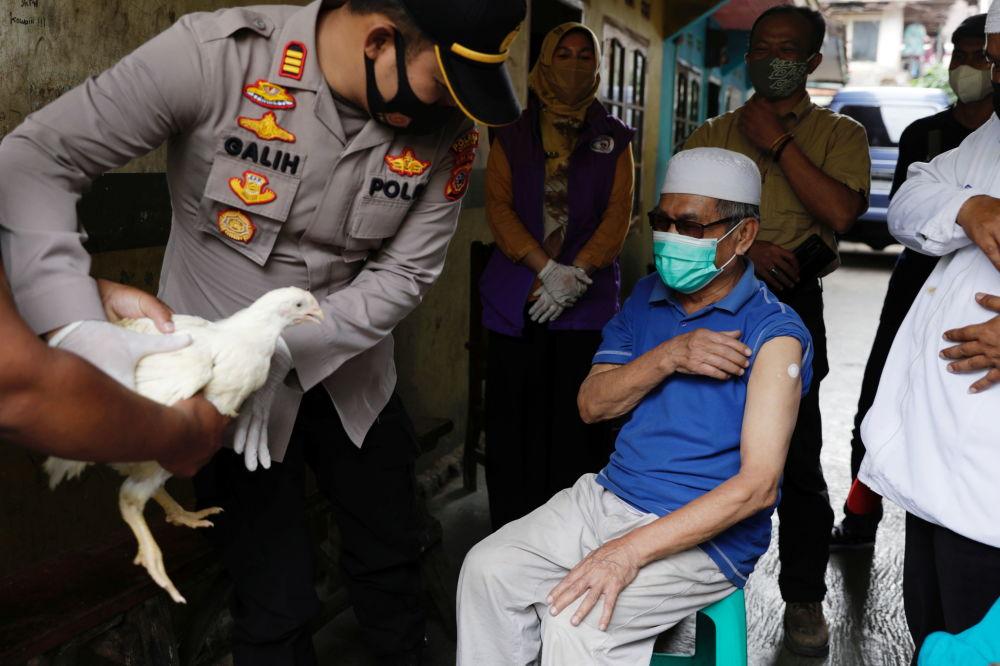 مرغ زنده، خانه و گونی برنج جایزه واکسن زدن
