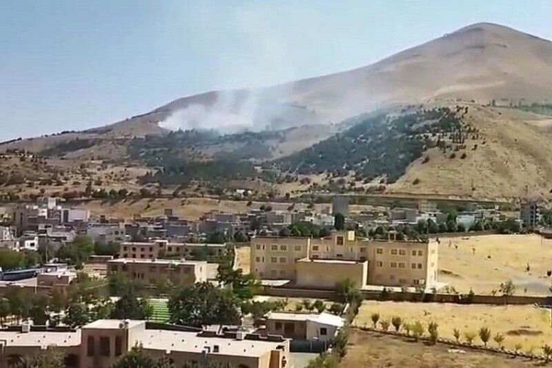 آتشسوزی در پارک آبیدر سنندج مهار شد