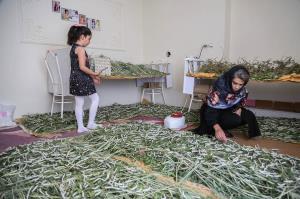 آغاز دهمین دور انتخاب زنان کارآفرین برتر با آرای مردمی