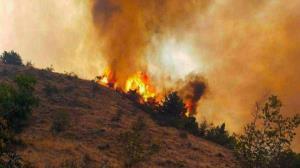 تلاش ۱۰ ساعته برای مهار آتشسوزی جنگلهای ارسباران