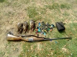 تشکیل ۷۹ پرونده تخلف شکار و صید در استان همدان