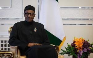 رئیس جمهور نیجریه: رئیسی شایسته پیروزی در انتخابات بود