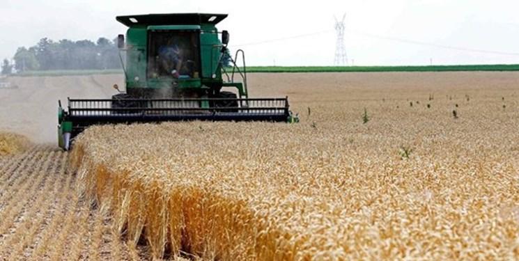 قیمت خرید تضمینی گندم در آذربایجانغربی اعلام شد