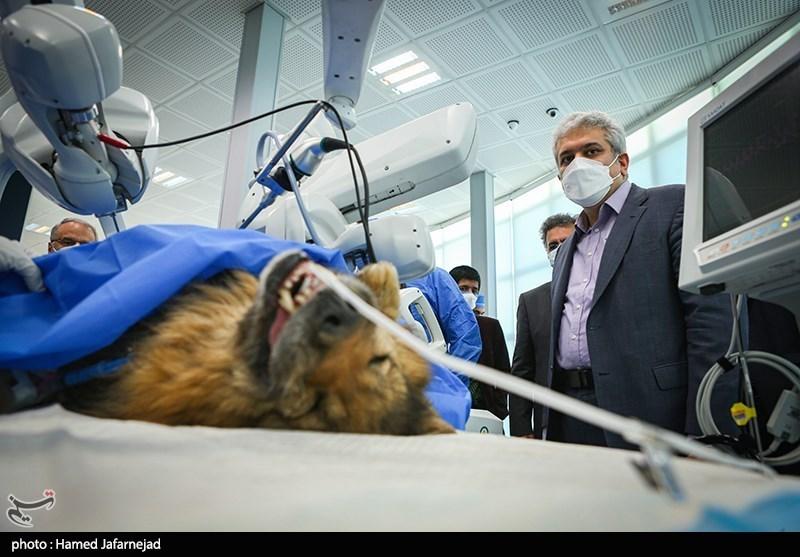 عکس/ اختراع محققان ایرانی؛ ربات ایران ساخت جراحی