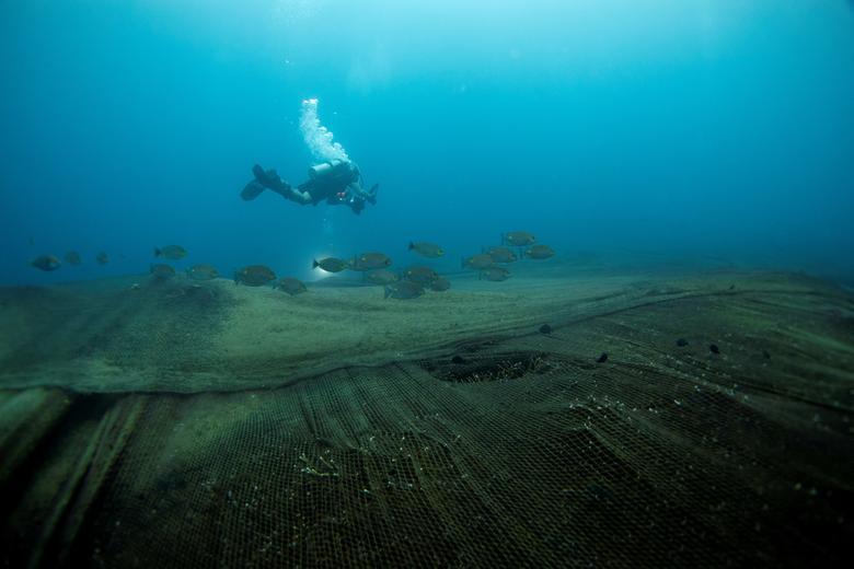 تورهای ماهیگیری متروکه در کف دریا