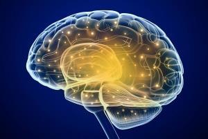 درمان سردرد با شبیه سازی شبکه عصبی مغز