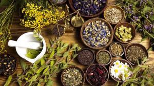گیاهان دارویی که برای درمان سوء هاضمه مفید هستند