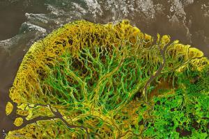 عکس روز ناسا؛ جلگهای در قطب شمال