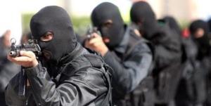 باند بین المللی مواد مخدر متلاشی شد