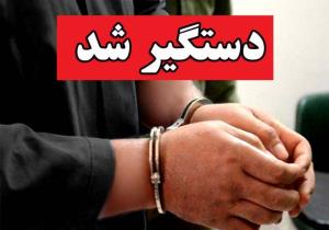 برق دستبند بر دستان سارق آرامگاه ایلامیها در شوش
