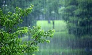 کاهش ۵۲درصدی بارندگی در زنجان