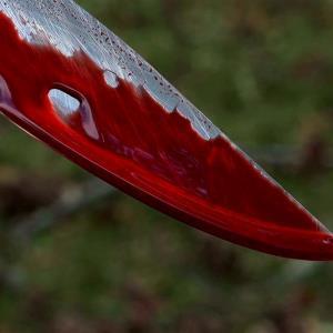 جدال خونبار مال باخته با زورگیران مخوف!