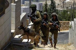 یورش صهیونیستها به کرانه باختری؛ بازداشت شماری از فلسطینیان