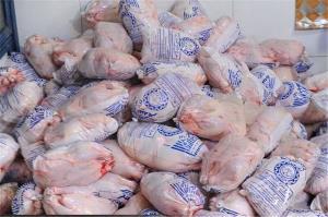 توزیع مرغ منجمد در سیستانوبلوچستان آغاز شد