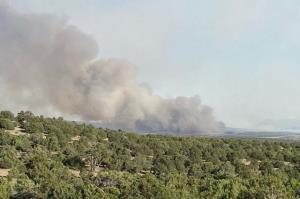 خشکسالیهای متوالی و خطر بالقوه آتشسوزی در جنگلها و مراتع استان سمنان