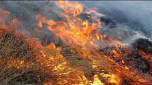 مدیرکل منابع طبیعی: نقاط بحرانی حریق در عرصههای منابع طبیعی کرمان شناسایی شدند