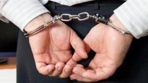 ۴ سارق حرفهای در اشنویه دستگیر شد