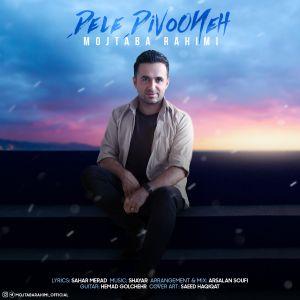 آهنگ جدید/  «دل دیوونه» از مجتبی رحیمی