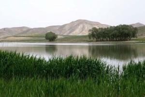 مدیرعامل شرکت آب: تالاب قوریگل آذربایجانشرقی افت تراز دارد