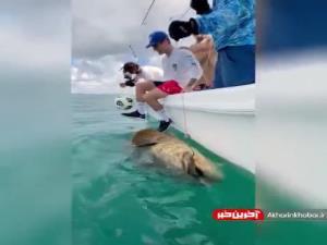 روپایی زدن روی ماهی در حال انقراض