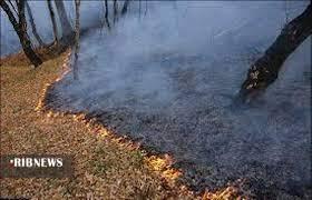هشدار احتمال آتشسوزی جنگلها در گلستان
