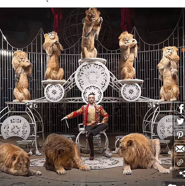 4گوشه دنیا/ فرار تماشاچیان هنگام افتتاح یک سیرک در روسیه!